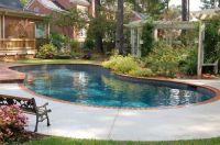 Kidney shaped swimming pool designs for backyard   Pool ...