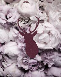 Vintage flower backgrounds, Hipster art and Vintage ...
