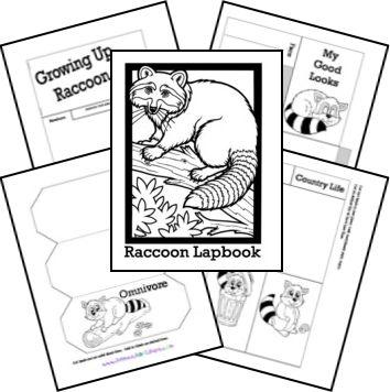 Raccoon Lapbook Printables matches Burgess Animal Book