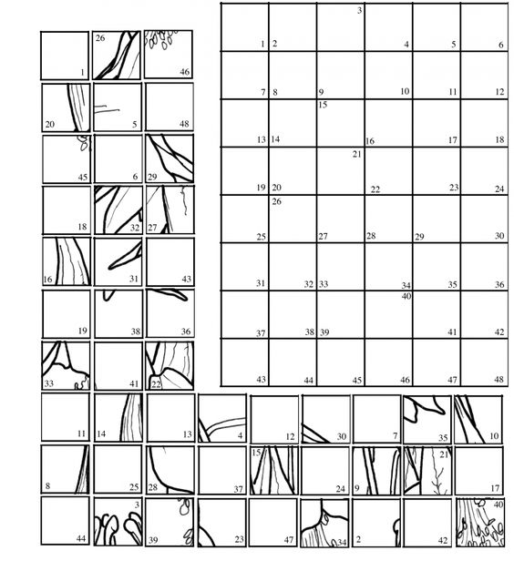 Mystery Grid Coloring Pages Sketch Coloring Page
