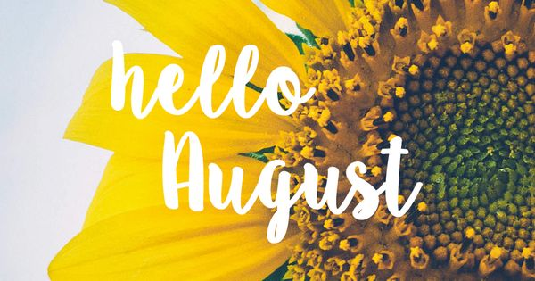 Happy Fall Wallpaper Iphone Hello August Sunflower Bright Happy Background August 2016