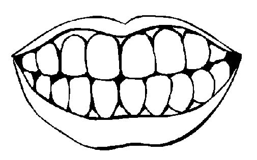 blank picture of teeth for how many teeth have you lost
