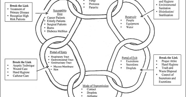 A detailed version of the Chain of Infection which
