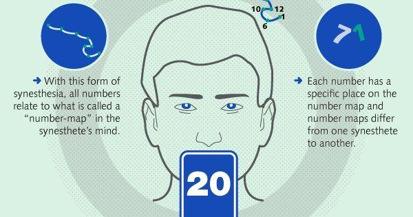 Understanding The Phenomenon Of Synesthesia Infographic