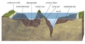 ocean floor map for kids   Ocean Floor Features Diagram