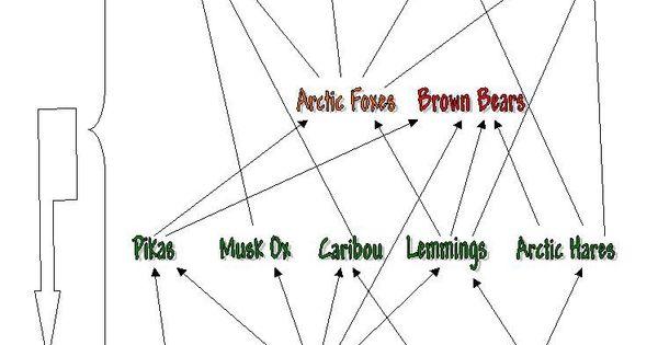 tundra 7 pin diagram