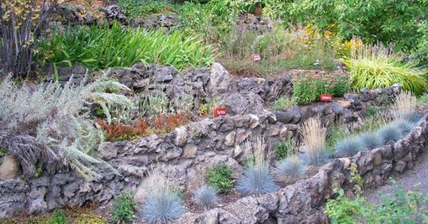 landscape ideas water runoff