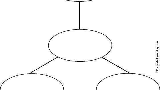 Star, Webbing, Cluster Graphic Organizer Printouts