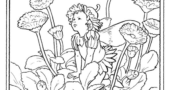 flower fairy coloring pages, coloring sheets, fairies