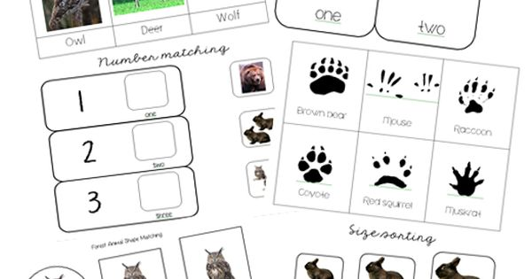 Free Forest Animal Printables and Activities from Welcome