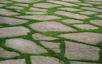 flagstone and grass | flagstone patio/path | Pinterest ...
