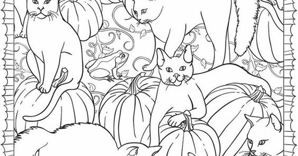 Welcome to Dover Publications free sample pages. You can