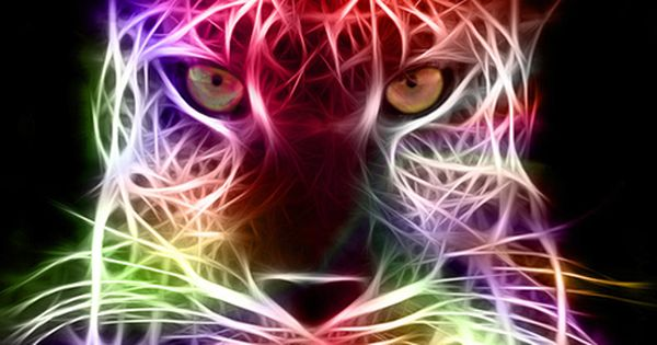 Cool Things Fractals  Edwin Pireh  Cool Animals  Pinterest  Fractals Google search and