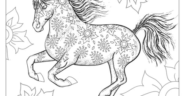 The Wonderful World of Horses Adult Coloring Colouring