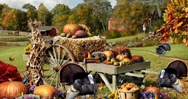 Fall Wallpaper With Pumpkins Thanksgiving On The Farm Family Nature Autumn Fall Beauty