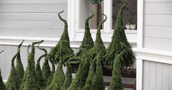 Weihnachtsbaum Stinkt