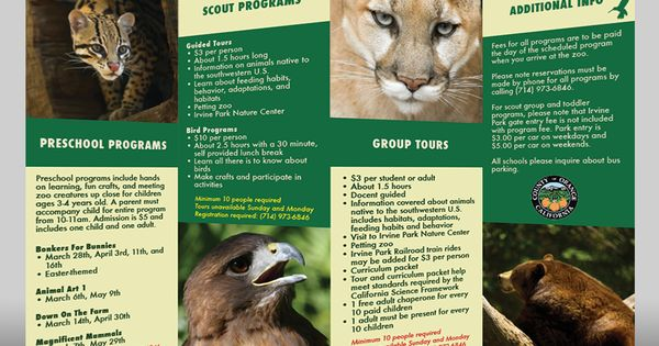 Brochure Design Zoo Google Search ART217 Brochure