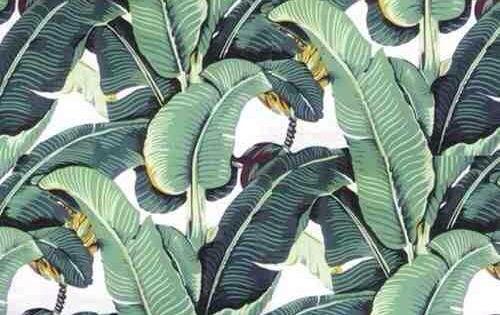 Blanche Devereauxs bedroom wallpaperbanana plant