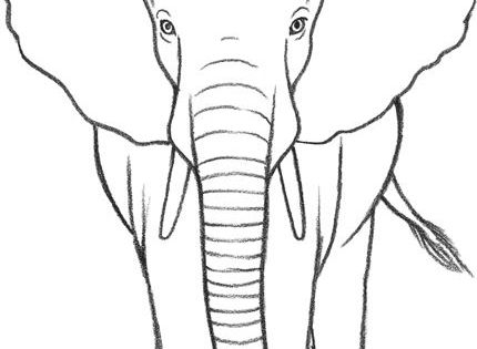 how to draw an elephant. Please also visit www