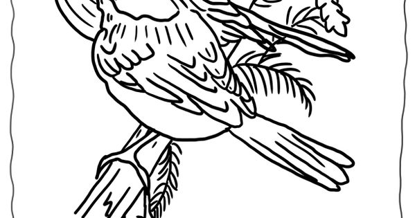 printable christmas coloring pages birds for Wonderweirded