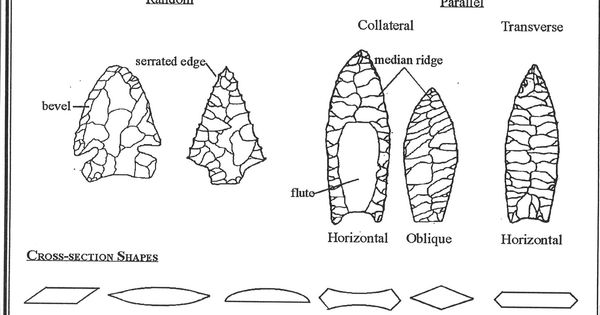 Projectile Point Flaking Patterns and Cross-Section Shapes