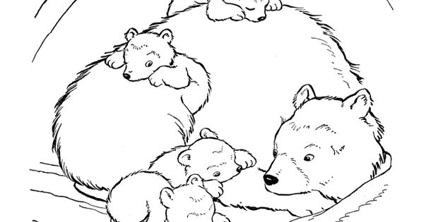 brown bear coloring page. bears unit study. five in a row