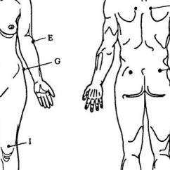 The Anatomy Of Anxiety Diagram Running Track Autopsy Diagrams Body Female | Foto Cortesía De Mwilliamson Medical Examiner Pinterest