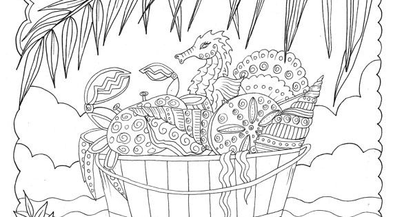 SHELLS TO COLOR AND RELAX COLORING BOOK Fun, relaxing and