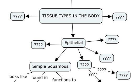 Biology Corner Tissues resources   anatomy   Pinterest
