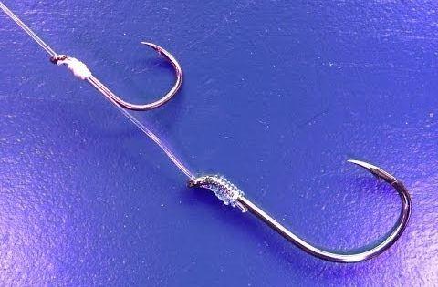 Adjustable Live Bait Fishing Rig YouTube Knots