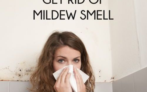 10 Cheap Ways to Get Rid of That Awful Mildew Smell