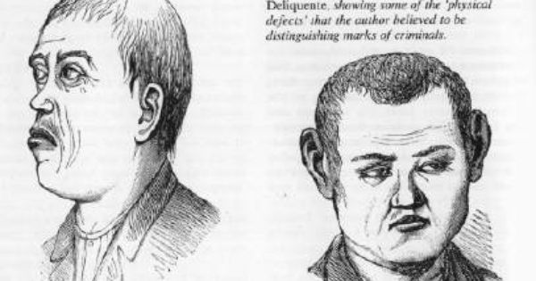 Physical characteristics of the typical criminal. In the