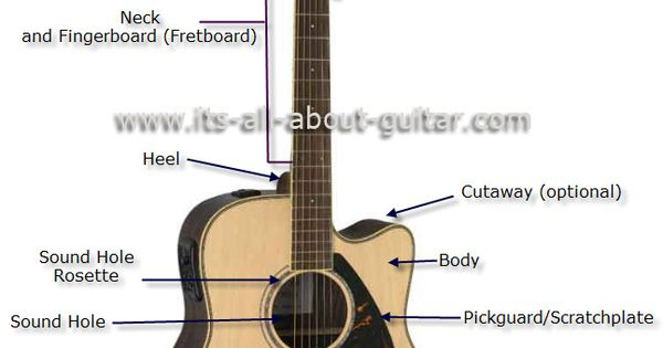 Guitar Anatomy The Parts Of The Acoustic Guitar Learn Guitar Club