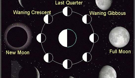 diagram of learning cycle 1994 ford bronco radio wiring learn more about the phases moon with this useful diagram. include ...