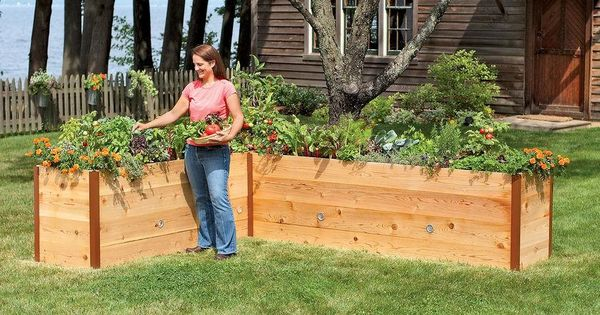 waist high raised garden beds i 39 d like to try this next spring  Raised. And I39d Like   makitaserviciopanama com