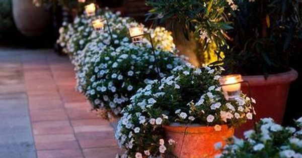 Lights in potted plants outside nice how pretty to line