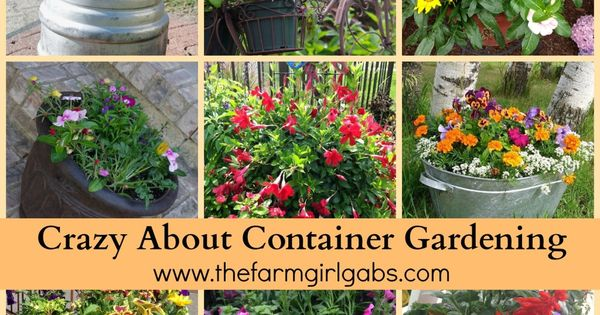 Crazy About Container Gardening! / How Does Your Garden