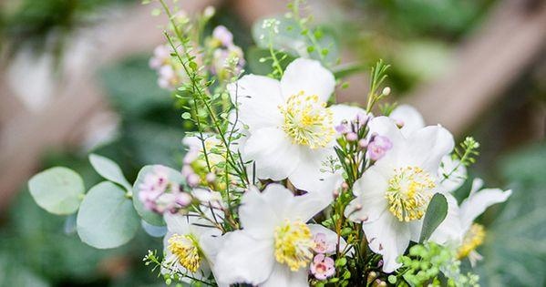 Hochzeitsblume Christrose  Friedatherescom Christrose wedding Fotografie Lichterstaub Blumen