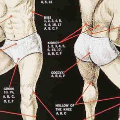Martial Arts Diagram Anatomy And Physiology Quizzes Karate Striking Points: I Have This Poster In My Garage, Next To Punching Bag | ...