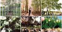Outdoor Weddings Do Yourself Ideas | outdoor wedding ...