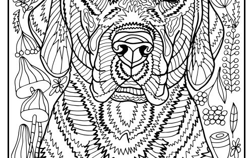 Free Printable Labrador Retriever Coloring Page Available