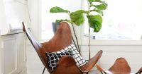 West Elm - Mid-Century Living Room With Leather Butterfly ...