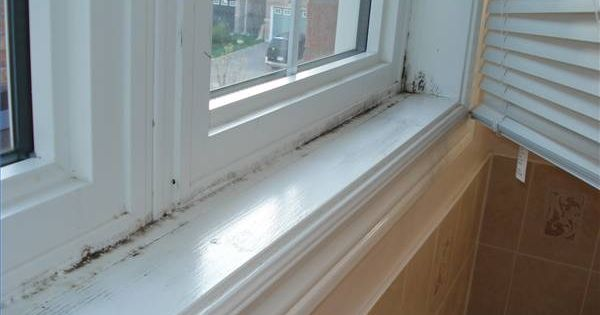 Is Black Mold Dangerous To Babies Remove Black Mold