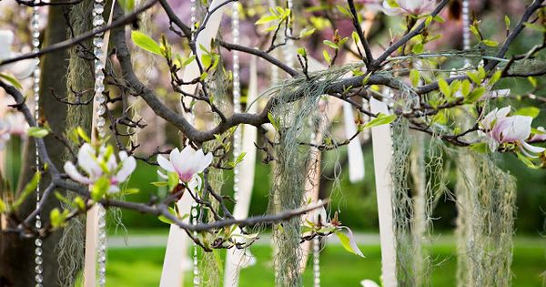 Hanging ribbon streamers moss and crystal beads in a