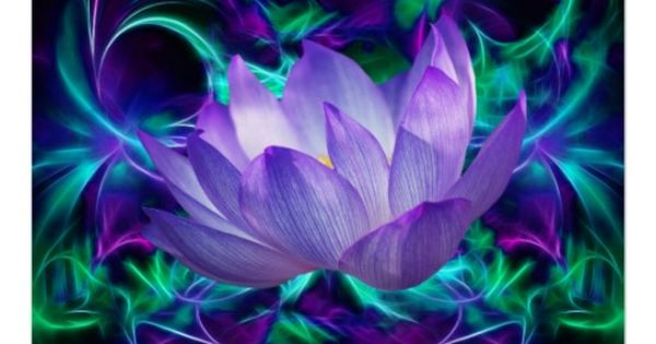 Purple Lotus flower and its meaning Poster   LeeMar   Pinterest   Lotus flower. Lotus and Flower