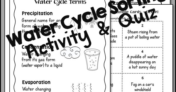 Water Cycle Sorting is a fun cooperative learning activity