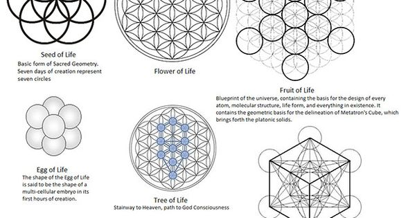 Stages of Sacred Geometry , seed of life , flower of life
