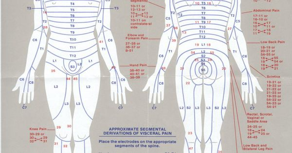 leg muscles and ligaments diagram electrical wiring diagrams residential an amazing chart for pad placement using stimulation pain control. http://www ...