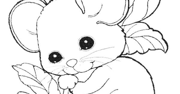 Cute Mouse Coloring Pages Free Kids Coloring Pages
