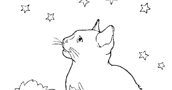 A Cat In The Middle Of The Night See Moon Coloring Pages